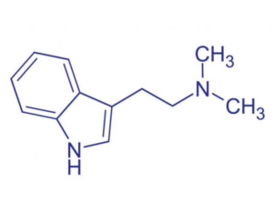 Ayahuasca molecule DMT